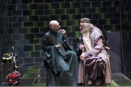 voldemort-and-dumbledore-700x466