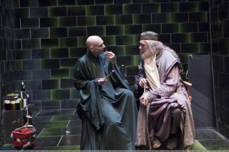 voldemort-and-dumbledore-700x466